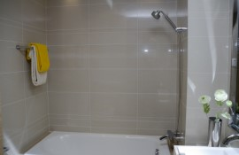 Plumbing Newport: Comtemporary Shower Installation